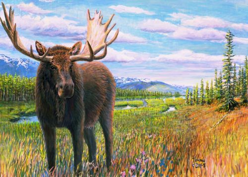 Moose for 12 x 16 Nov 12 2017 for ws