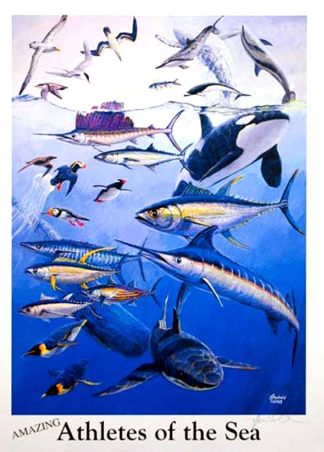 #249 Athletes of the Sea 14 x 18