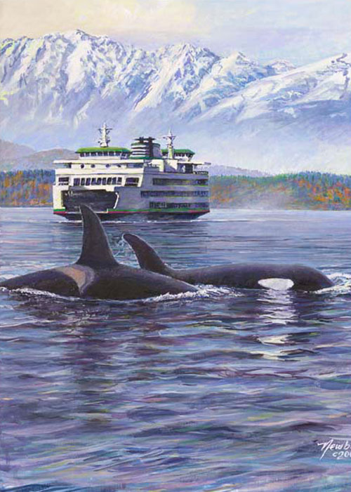 #397 Lucky Ride (Orcas & ferry)