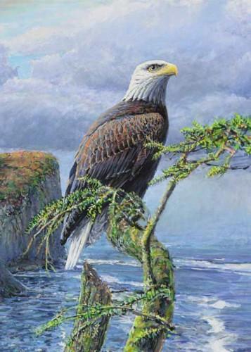#38 Bald Eagle