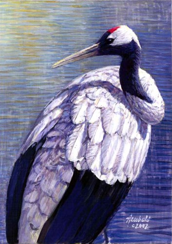 #28 Red-crowned Crane