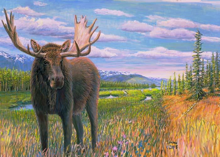 #74 Moose