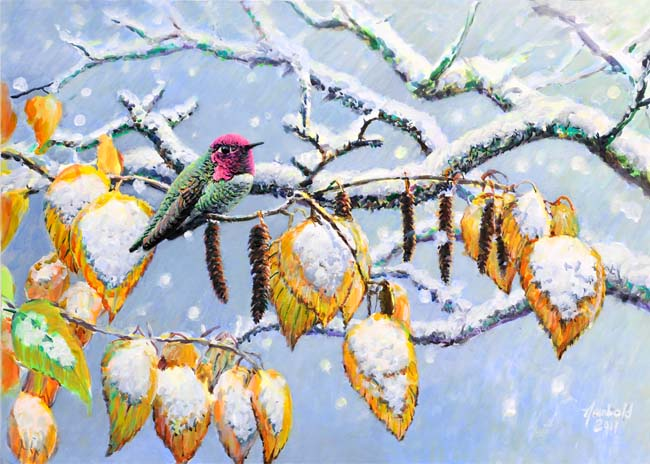 Anna's Hummingbird in Snow, painting by Ed Newbold
