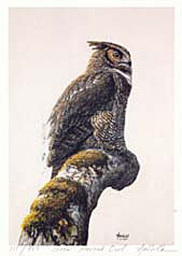 #159 Great Horned Owl
