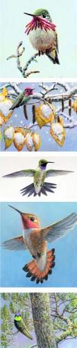 #149 Hummingbird Skinny