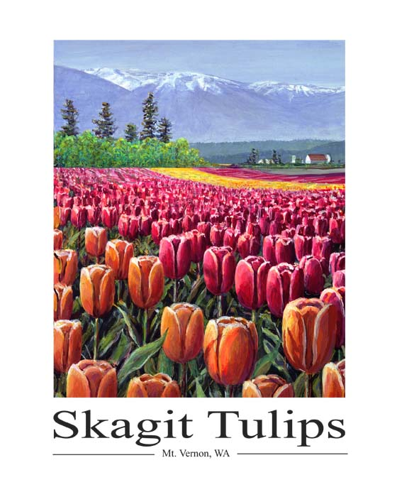 #104 Tulips on the Skagit Flats