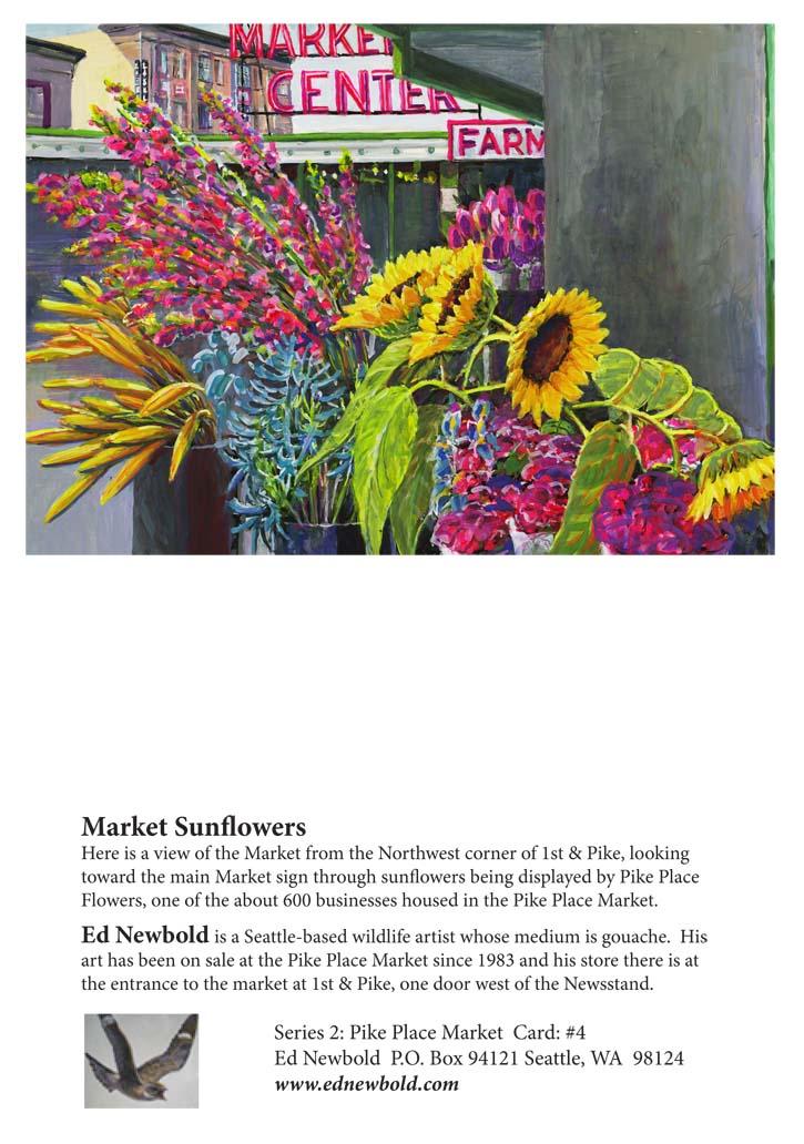 NC Series 2 #4 Market Sunflowers