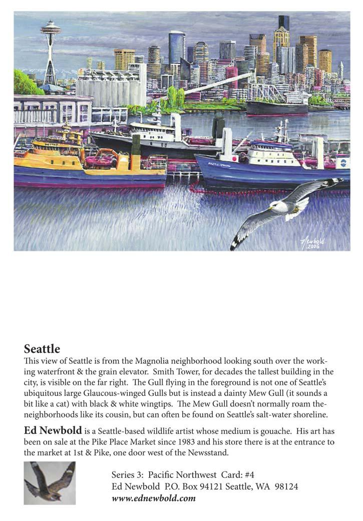 NC Series 3 #4 Seattle