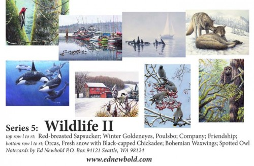 Series 9 Box of Notecards Wildlife 2