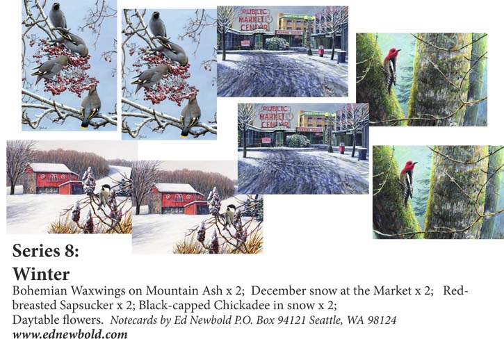 Series 8 Box of 8 Notecards Winter 1