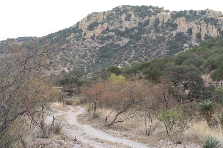 ranch blog white cliffs