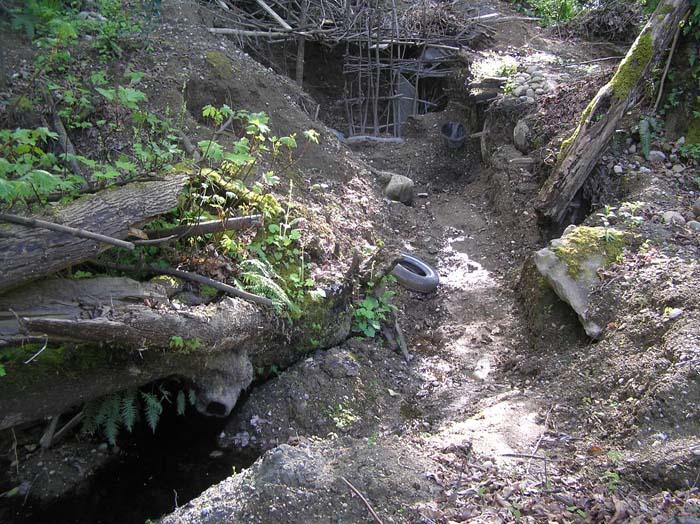 cheasty excavations 2