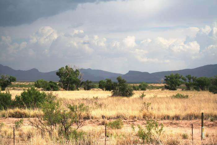 bootheel blog gray ranch