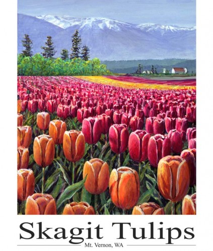 #239 Skagit Tulips (14 x 18)