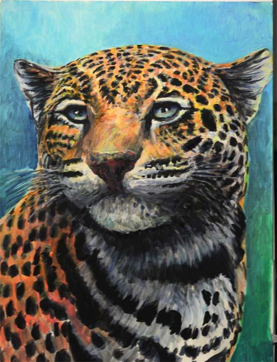 jaguar 10 5 2014