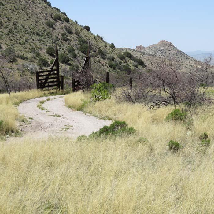 spring visit gates