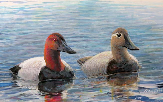 canvasbacks for curating web blog