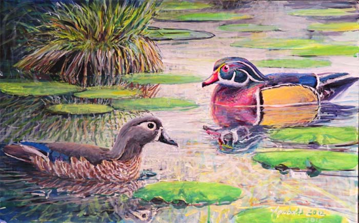 wood ducks for curating