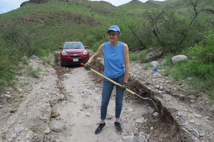 august rain blog Delia shovel replace other