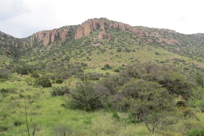 august rain blog red cliffs