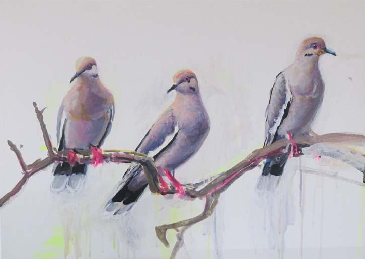 end of august blog white-winged Doves ptg