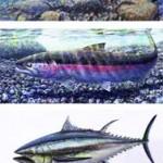 #284 Fish Skinny (vertical)