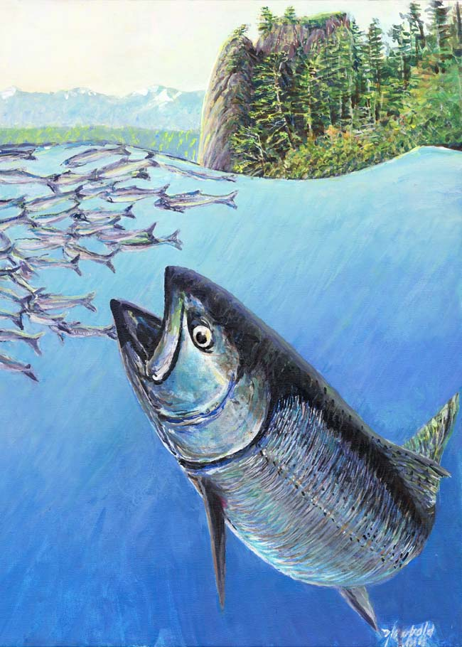"#438 King Salmon at Pillar Point (12 x 16"")"