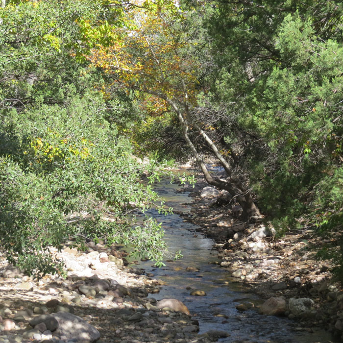 Cave Creek 10 28 2015 for ws