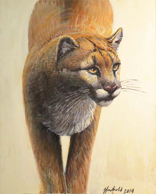 cougar sept 30 2015 for ws
