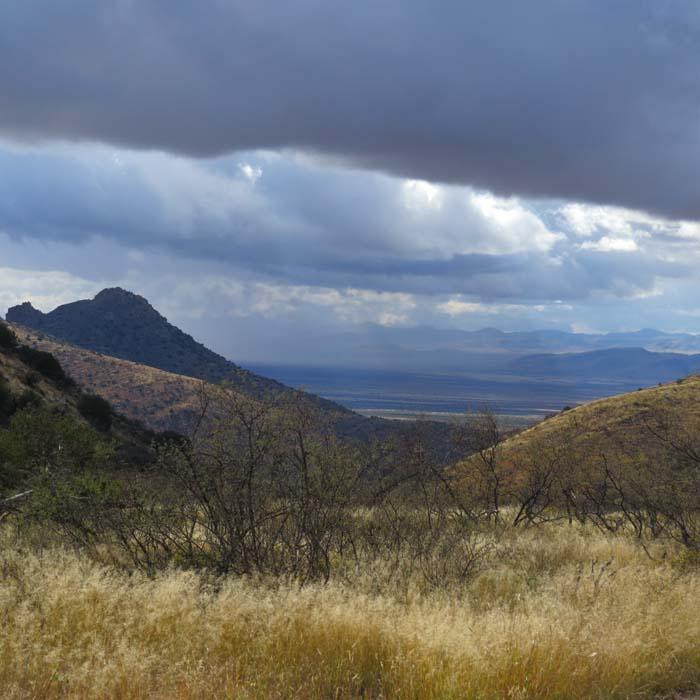 rain down canyon for ws