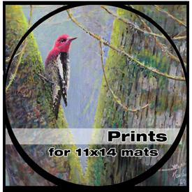 Prints - 11 x 14 mats