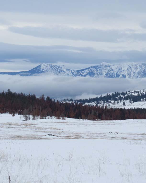 omak landscape