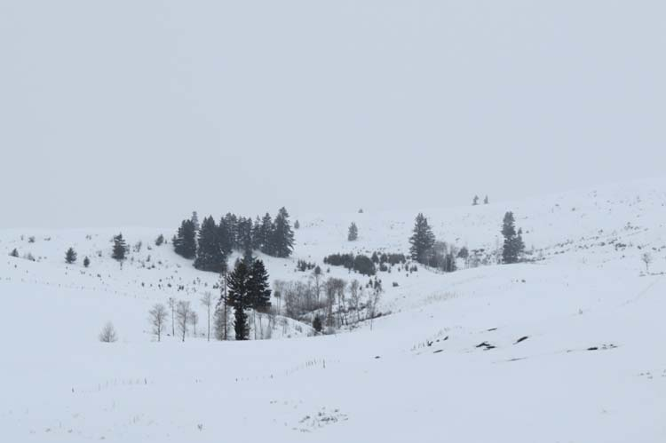 omak more snow and fog