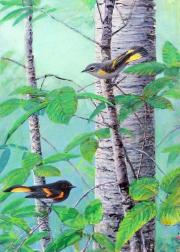 redstarts for for ws 2016
