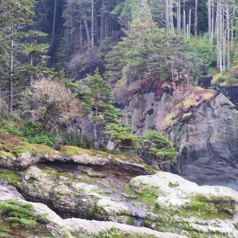 cape-flattery-oct-2016-landscape-no-water-for-ws