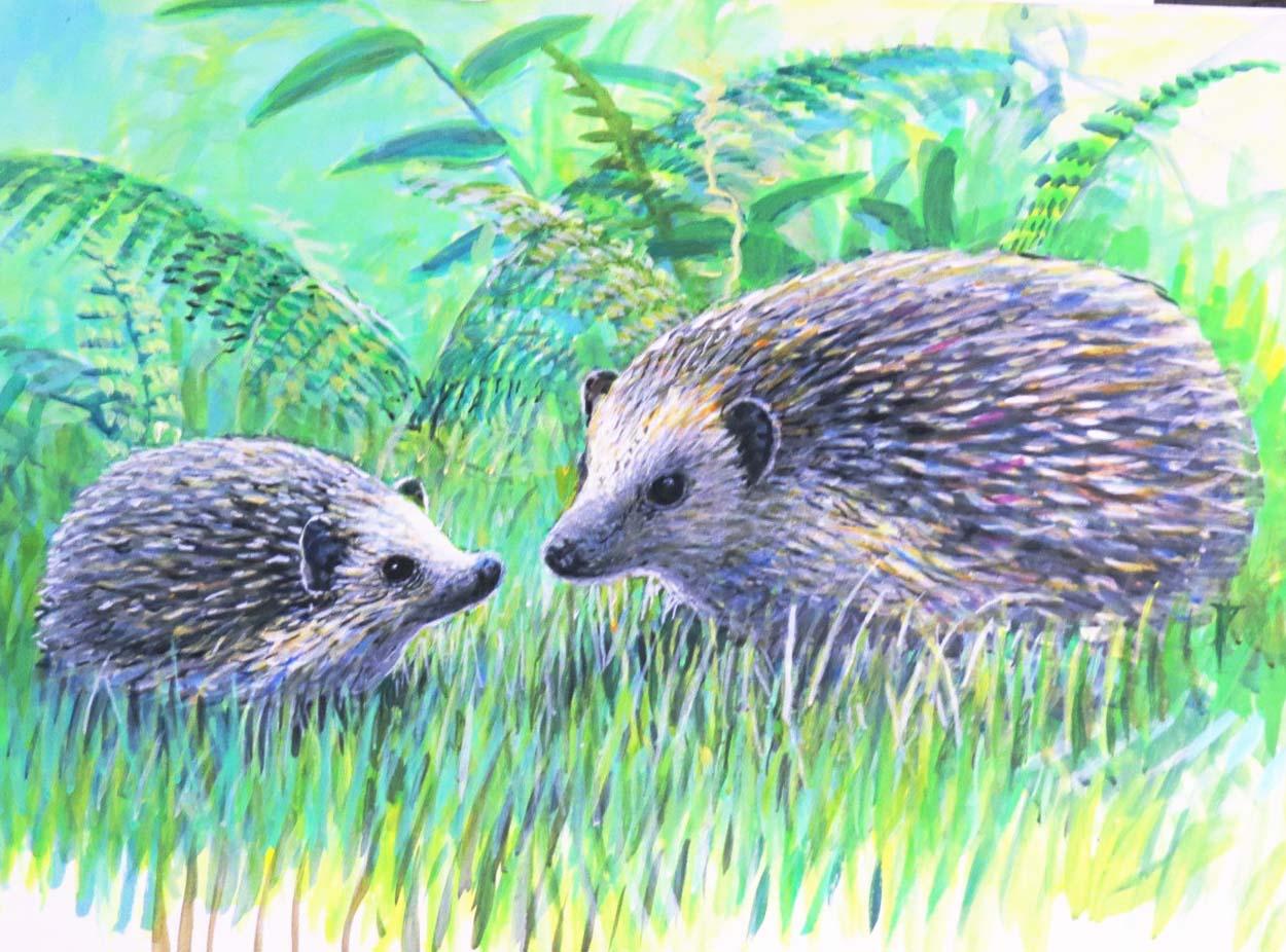 hedgehog-ptg-for-ws-oct-6