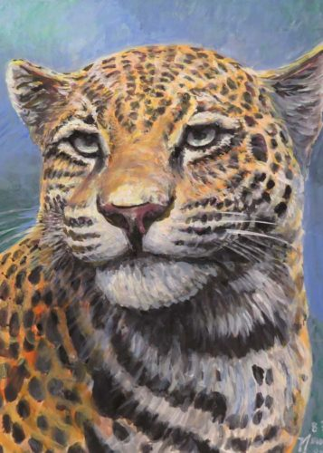 Jaguar for 12 x 16 jan 11 2018 for ws